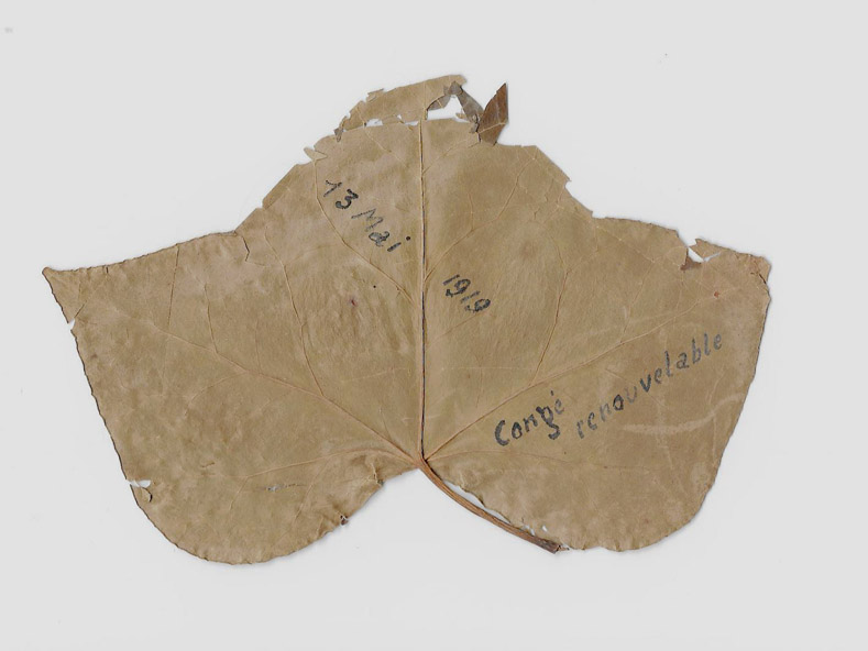 Feuille 1917